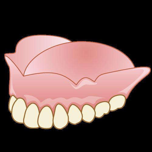 レジン床義歯(保険・自費)
